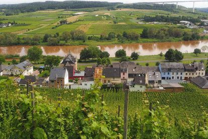 A photo of The Mosel Valley looking down at the river
